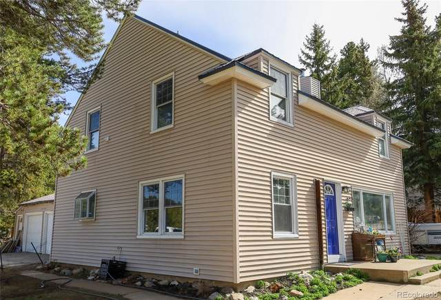 217 Mount Traver Drive, Leadville, CO 80461 (#8965026) :: The Healey Group