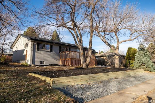 6849 S Foresthill Street, Littleton, CO 80120 (#8966600) :: Peak Properties Group