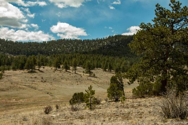 Camp Drive, Westcliffe, CO 81252 (#8978640) :: Real Estate Professionals