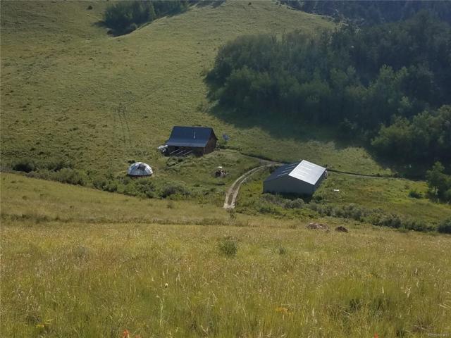**** Williams Creek Road, Gardner, CO 81040 (#8984204) :: The Peak Properties Group