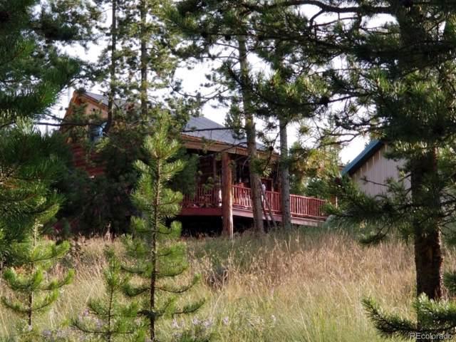 26 Wilderness Road, Walden, CO 80430 (#8992822) :: RazrGroup