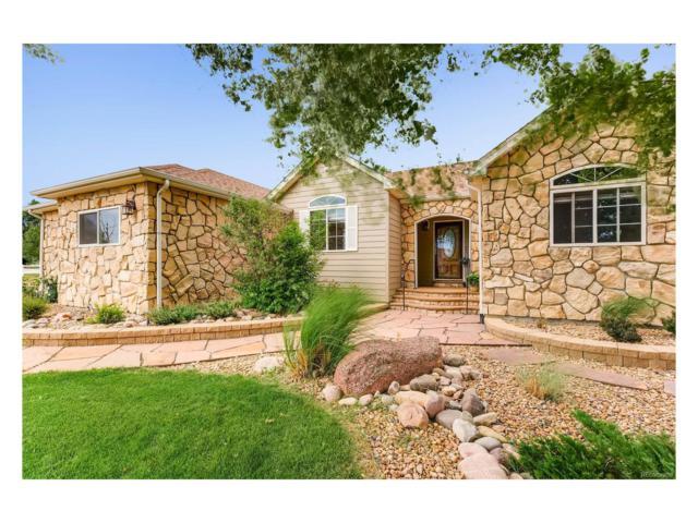 15540 Ulster Street, Thornton, CO 80602 (MLS #8998859) :: 8z Real Estate