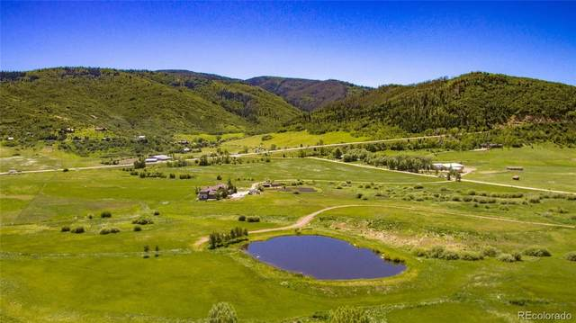 RCR 20 County Road  Adjoins Both Colo 131 & Us Hwy 40, Steamboat Springs, CO 80477 (#9007448) :: The DeGrood Team