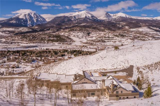 160 Hamilton Creek Trail, Silverthorne, CO 80498 (#9012219) :: Realty ONE Group Five Star