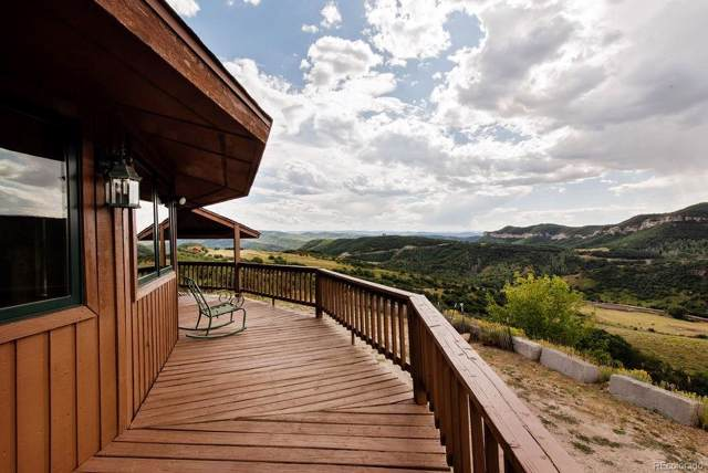 40405 Hill-N-Dale Road, Steamboat Springs, CO 80487 (#9016028) :: Mile High Luxury Real Estate