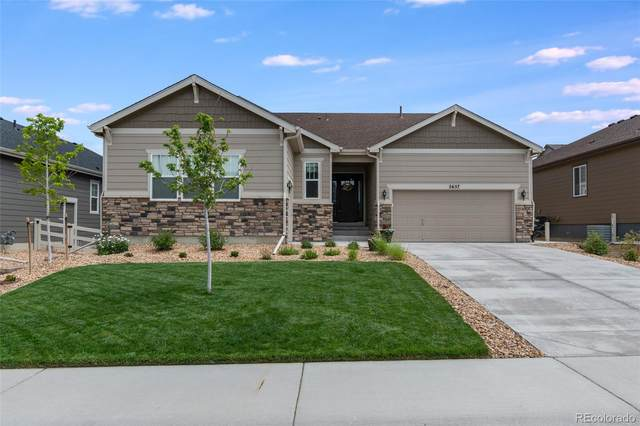 2657 Echo Park Drive, Castle Rock, CO 80104 (#9023272) :: The Heyl Group at Keller Williams