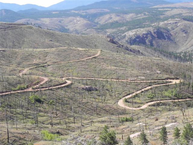 151156 Cochise Trail, Pine, CO 80470 (MLS #9025815) :: 8z Real Estate