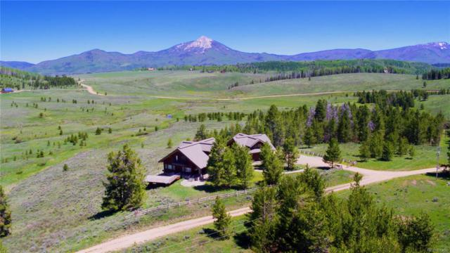 23800 Crane Lane, Clark, CO 80428 (MLS #9027518) :: 8z Real Estate