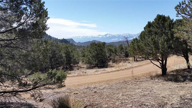 805 Red Feather Road, Cotopaxi, CO 81223 (#9042488) :: The DeGrood Team
