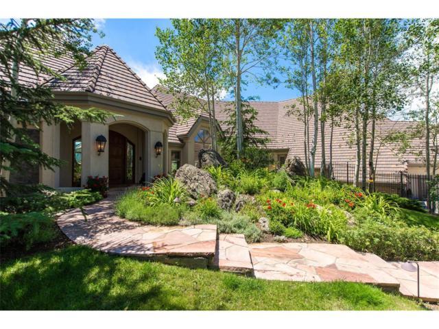 31135 Skokie Lane, Evergreen, CO 80439 (MLS #9076336) :: 8z Real Estate