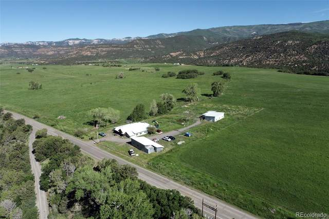 63850 E Highway 330, Collbran, CO 81624 (MLS #9078708) :: 8z Real Estate