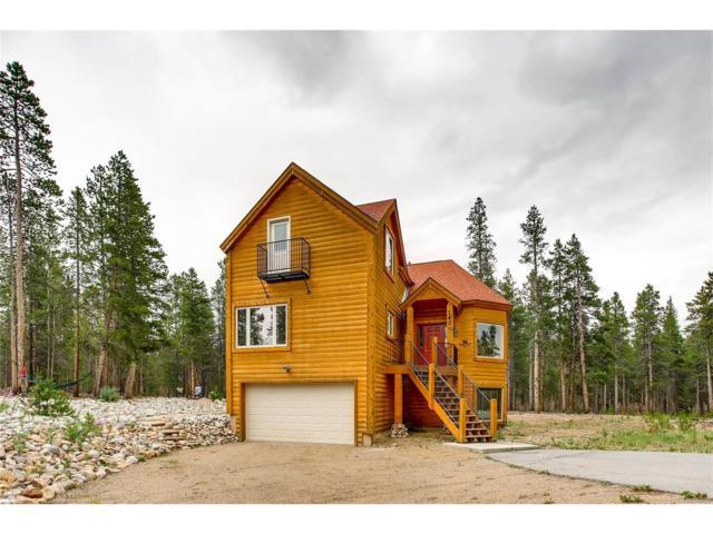 160 Alpine Drive, Leadville, CO 80461 (MLS #9086852) :: 8z Real Estate