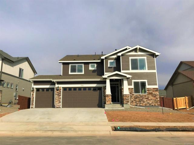 5946 Connor Street, Timnath, CO 80547 (MLS #9100012) :: 8z Real Estate