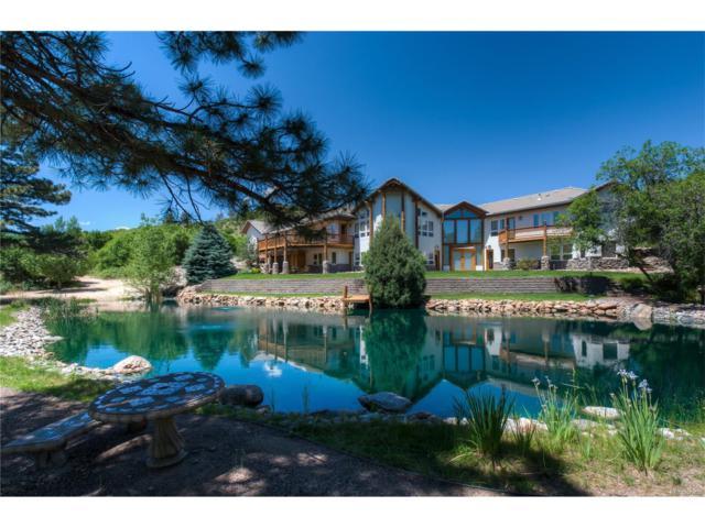 6371 Lemon Gulch Drive, Castle Rock, CO 80108 (MLS #9132384) :: 8z Real Estate
