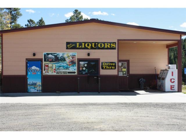 17218 Highway 119, Black Hawk, CO 80422 (MLS #9160309) :: 8z Real Estate