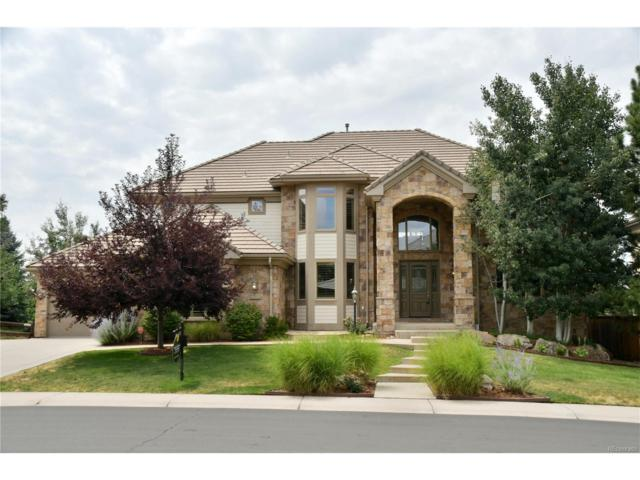 9525 S Shadow Hill Circle, Lone Tree, CO 80124 (MLS #9163831) :: 8z Real Estate