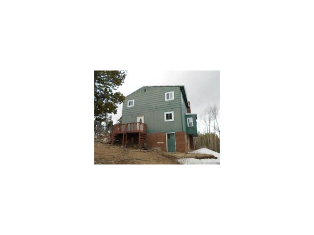 160 Sego Lily Way, Black Hawk, CO 80422 (MLS #9172372) :: 8z Real Estate