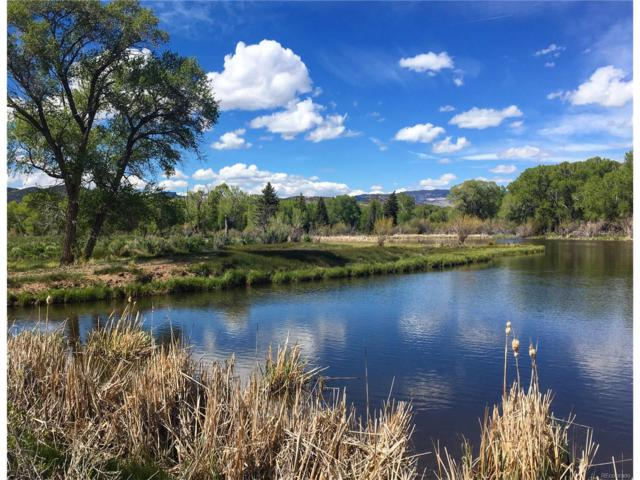 437 Cord 50, South Fork, CO 81154 (MLS #9181120) :: 8z Real Estate