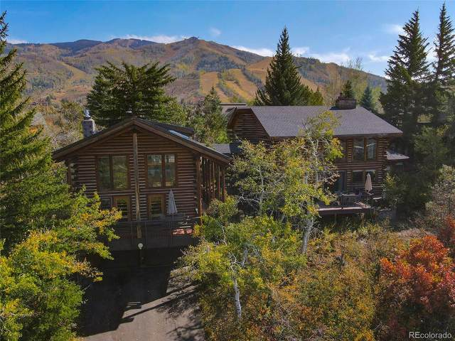 1527 Natches Road, Steamboat Springs, CO 80487 (#9192209) :: The DeGrood Team