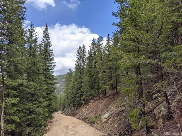 000 Old Little Bear Creek Road, Idaho Springs, CO 80452 (MLS #9193511) :: Bliss Realty Group