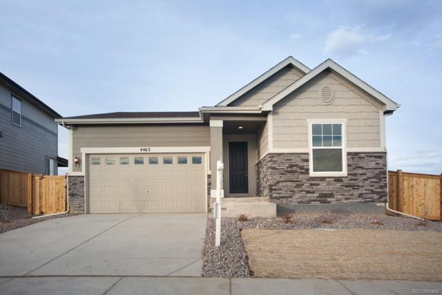 4463 E 96th Way, Thornton, CO 80229 (#9208537) :: HomePopper