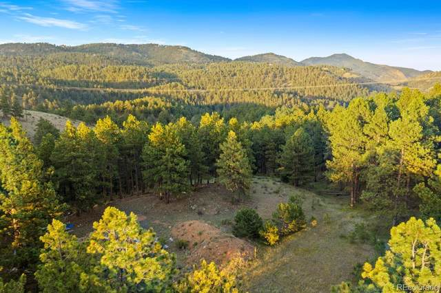 TBD Lot 4 Elk Valley Road, Evergreen, CO 80439 (#9212162) :: The HomeSmiths Team - Keller Williams