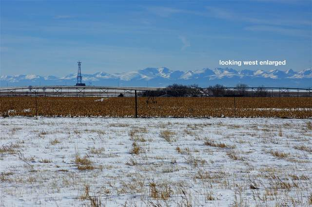1418 Weld County Road 49, Hudson, CO 80642 (#9218621) :: James Crocker Team
