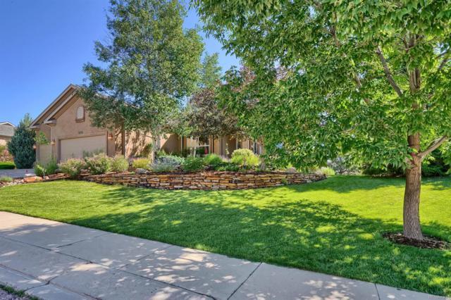 4715 Seton Hall Road, Colorado Springs, CO 80918 (MLS #9223560) :: 8z Real Estate