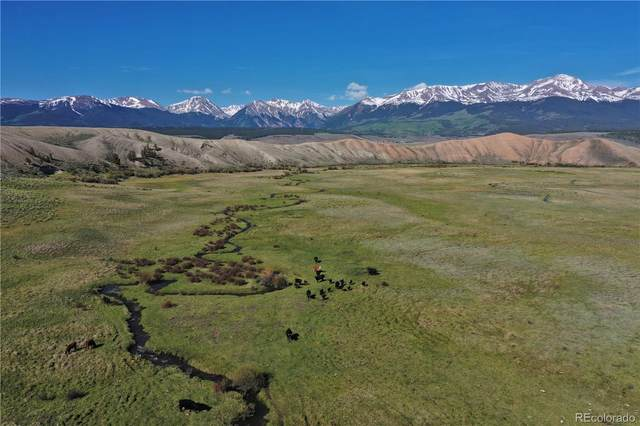 1250 County Road 55, Leadville, CO 81211 (#9224363) :: The Brokerage Group