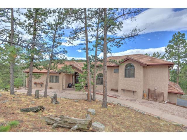 28047 Meadowlark Drive, Golden, CO 80401 (MLS #9275053) :: 8z Real Estate