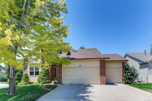 841 W 126th Court, Westminster, CO 80234 (#9278993) :: Sellstate Realty Pros