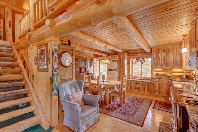 514 Pinto Trail, Como, CO 80432 (MLS #9285879) :: 8z Real Estate