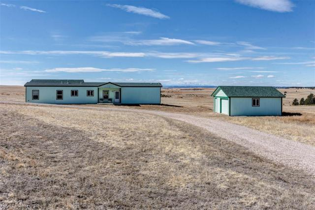 29555 County Road 99, Ramah, CO 80832 (#9318339) :: The DeGrood Team