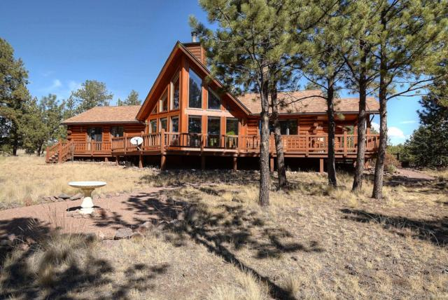 930 Doe Valley Road, Guffey, CO 80820 (#9320014) :: 5281 Exclusive Homes Realty