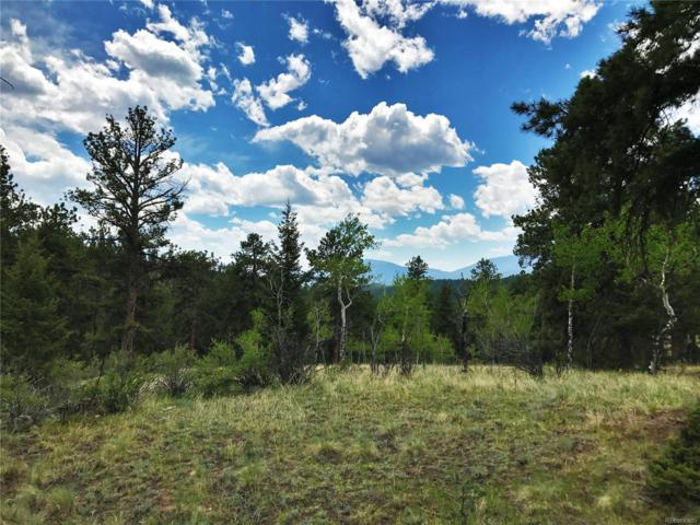 Elk Creek Drive, Pine, CO 80470 (#9348045) :: Wisdom Real Estate