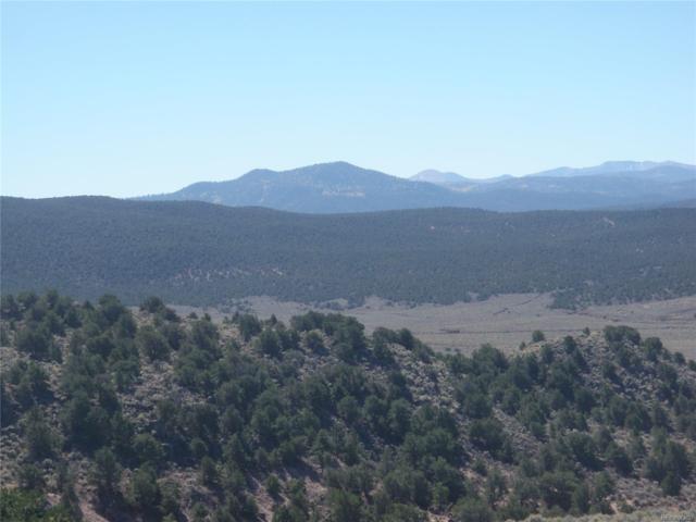 57 Elk Park Ranch, Garcia, CO 81134 (MLS #9388182) :: 8z Real Estate