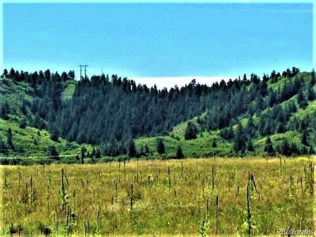 3240 Ditmars Lane, Castle Rock, CO 80104 (#9389093) :: The Harling Team @ Homesmart Realty Group