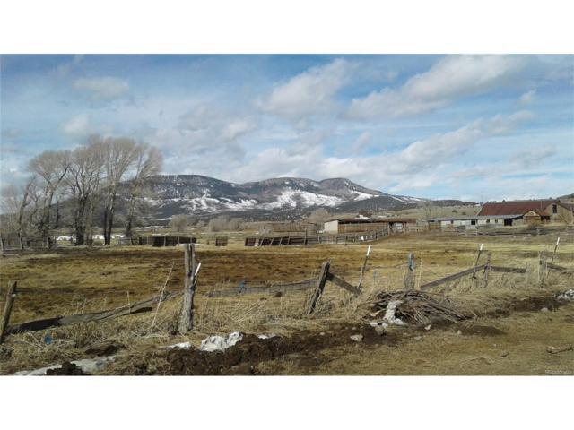 871 W Pfieffer Loop, South Fork, CO 81154 (MLS #9392349) :: 8z Real Estate