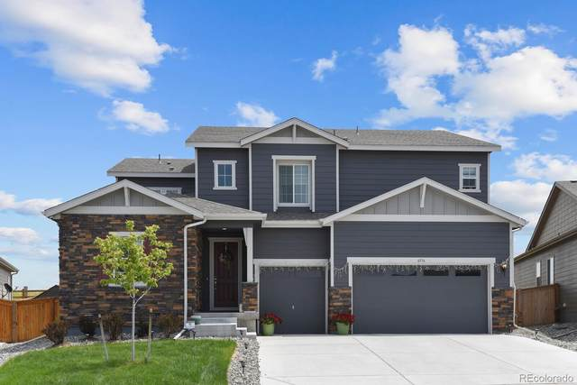 6536 Merrimack Drive, Castle Pines, CO 80108 (#9395995) :: Own-Sweethome Team