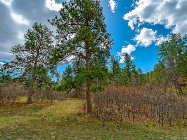 1961 Via Los Pinon, Castle Rock, CO 80104 (MLS #9402586) :: 8z Real Estate