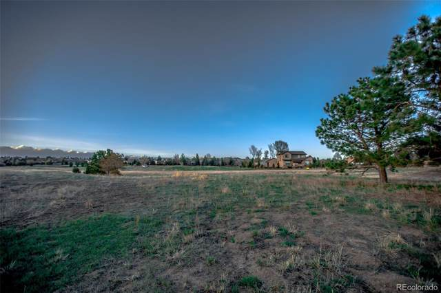 14149 Stone Eagle Place, Colorado Springs, CO 80921 (#9412783) :: The Gilbert Group