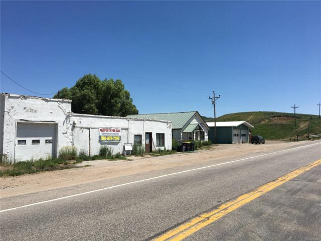 21600 Us Hwy 40, Steamboat Springs, CO 80487 (#9452264) :: The Heyl Group at Keller Williams