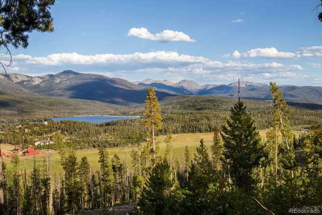 1641 County Road 454, Grand Lake, CO 80447 (#9476438) :: The Gilbert Group