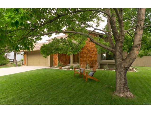 8220 S Locust Way, Centennial, CO 80112 (MLS #9484668) :: 8z Real Estate