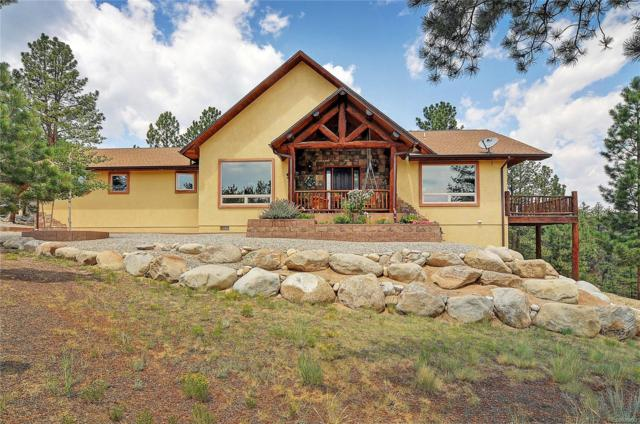 13103 County Road 261J-1, Nathrop, CO 81236 (#9486486) :: The Heyl Group at Keller Williams