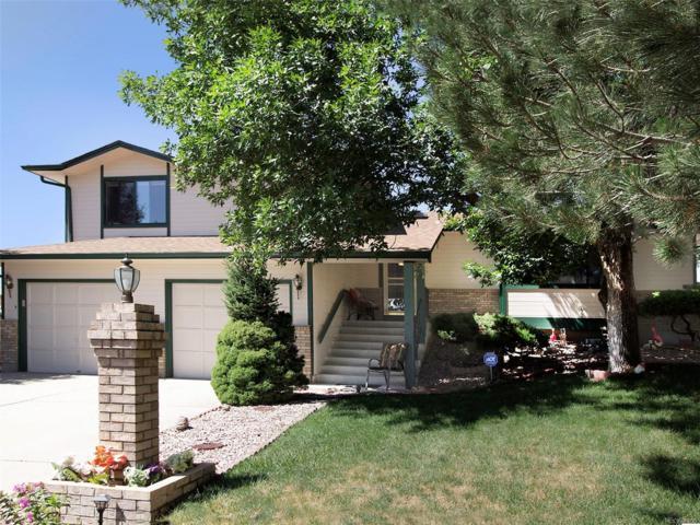 4140 Novia Drive, Colorado Springs, CO 80911 (#9493390) :: The Heyl Group at Keller Williams