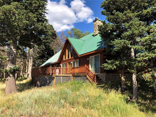 2532 Andes Loop, Fort Garland, CO 81133 (#9493855) :: Wisdom Real Estate