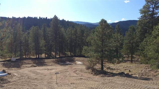28288 Lone Elk Trail, Evergreen, CO 80439 (MLS #9507253) :: 8z Real Estate