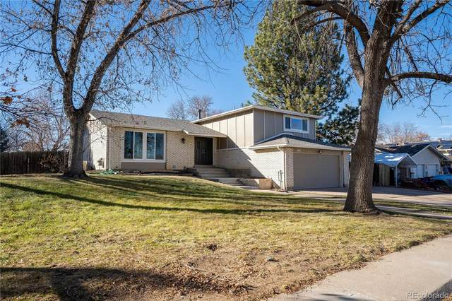 6833 S High Street, Centennial, CO 80122 (#9527800) :: Real Estate Professionals