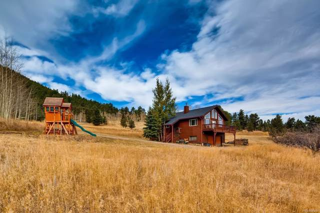 1167 S Pine Drive, Bailey, CO 80421 (#9537127) :: The DeGrood Team